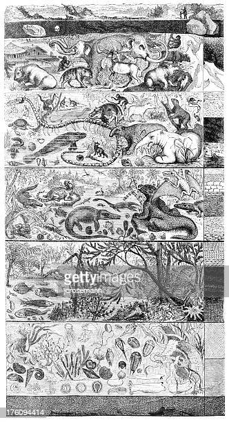 層の地球 - 哺乳類点のイラスト素材/クリップアート素材/マンガ素材/アイコン素材