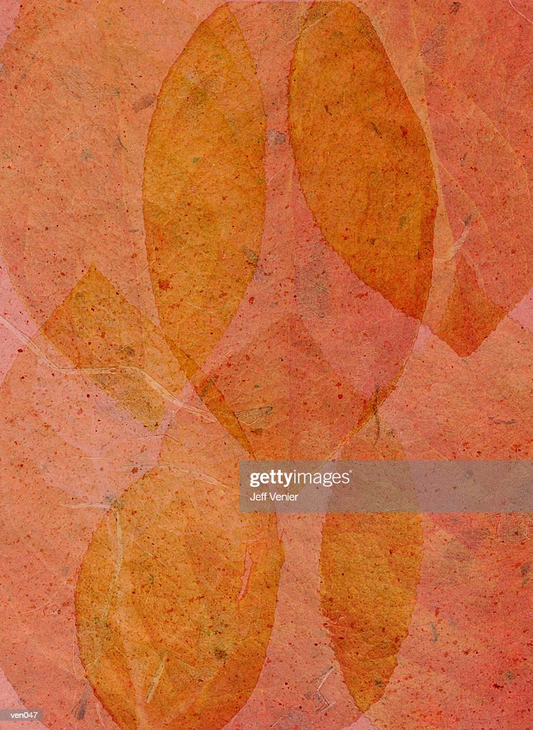 Leaf Collage Background : Stock Illustration