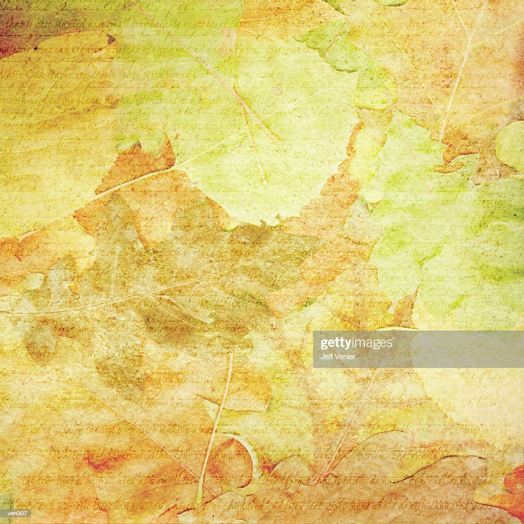 Leaf Rubbing Background : Stock Illustration