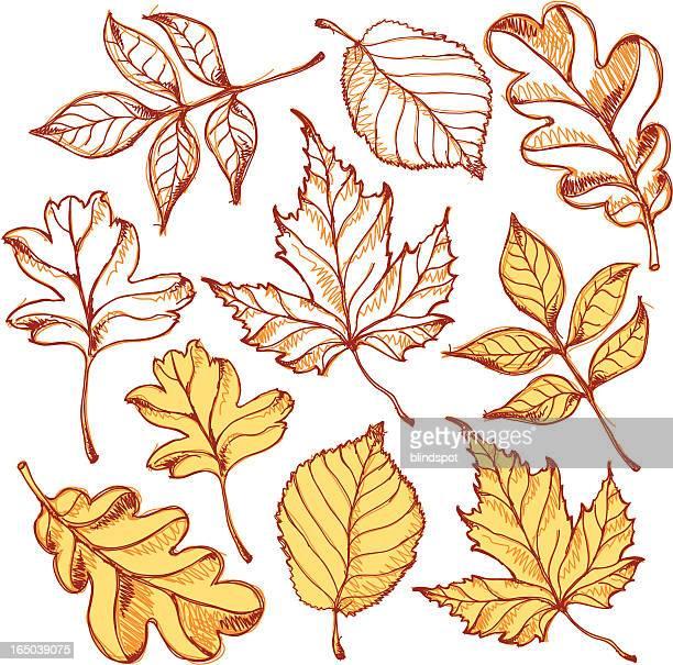leafs - 元素記号点のイラスト素材/クリップアート素材/マンガ素材/アイコン素材