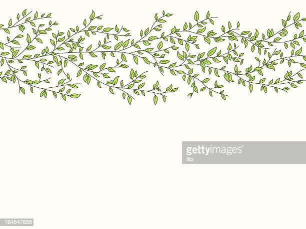 leafy background - vine stock illustrations
