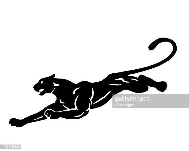Leaping Panther