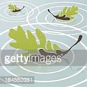 葉、池 - オークの葉点のイラスト素材/クリップアート素材/マンガ素材/アイコン素材