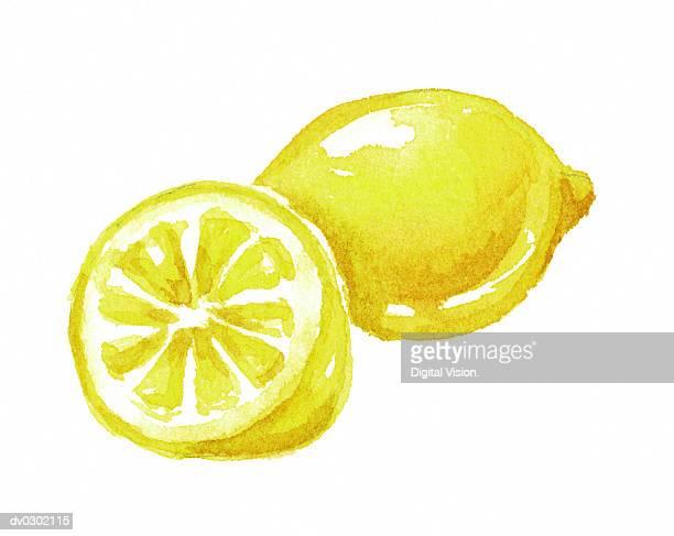illustrations, cliparts, dessins animés et icônes de lemon and lemon half - fruit