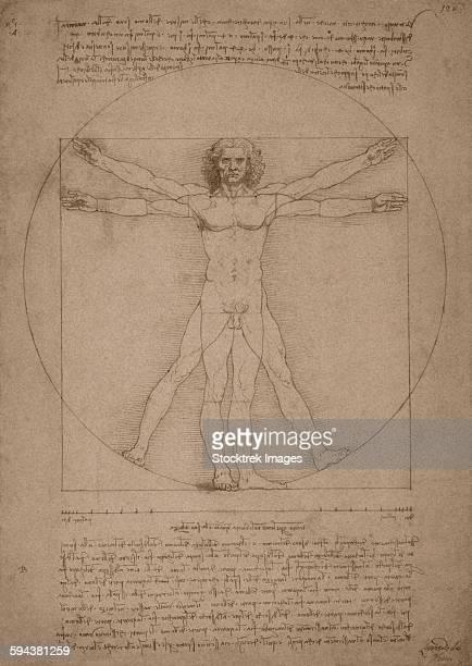 Leonardo da Vincis Vitruvian Man, circa 1490.