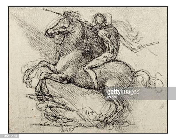 ilustraciones, imágenes clip art, dibujos animados e iconos de stock de bocetos y dibujos de leonardo: hombre a caballo (sforza) - caballo familia del caballo