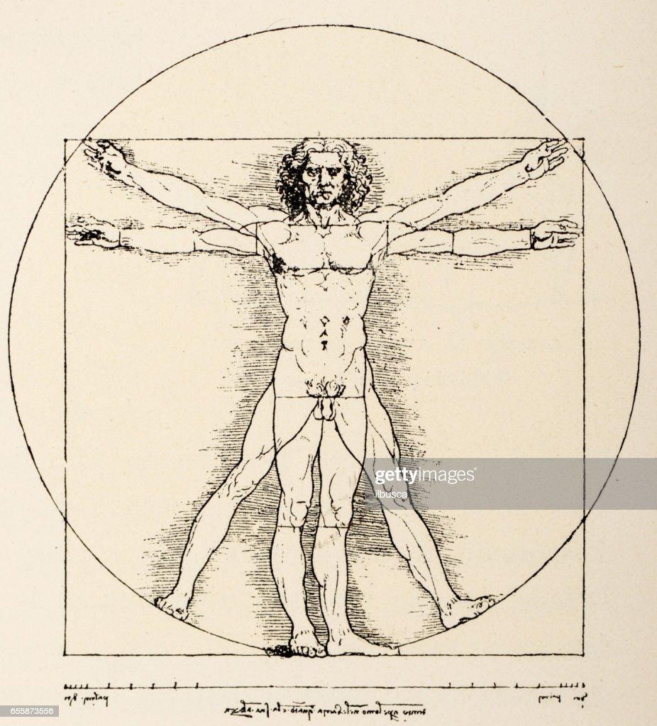 Leonardo Da Vinci Stock Illustrations And Cartoons | Getty Images