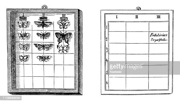 Lepidopterology is a branch of entomology concerning the scientific study of moths and the three superfamilies of butterflies