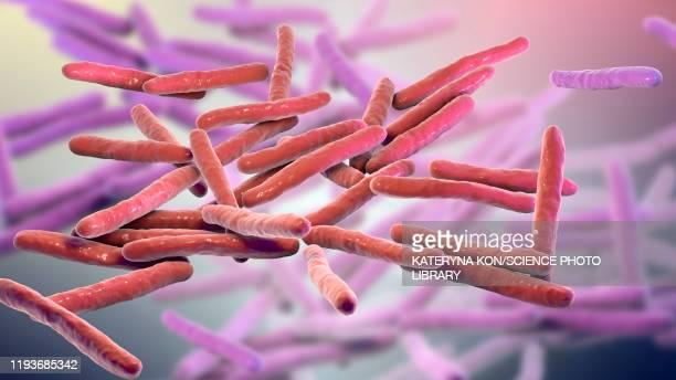 illustrazioni stock, clip art, cartoni animati e icone di tendenza di leprosy bacteria, illustration - lebbra