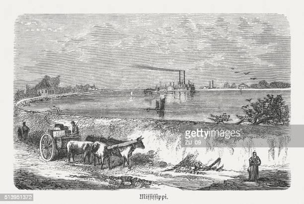 ilustrações de stock, clip art, desenhos animados e ícones de diques no rio mississipi, madeira, publicada em 1880 (kit 1 - dique barragem