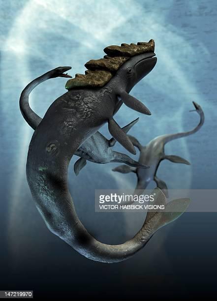 ilustraciones, imágenes clip art, dibujos animados e iconos de stock de leviathan and plesiosaur, artwork - plesiosaurio