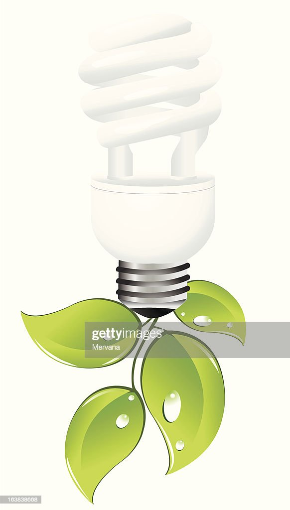 Light Bulb and Green Leaves