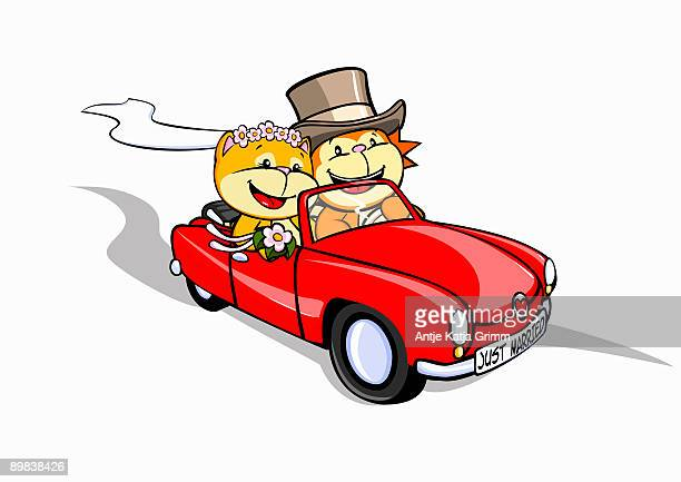 a lion and a cat just married in a convertible - capital letter stock illustrations