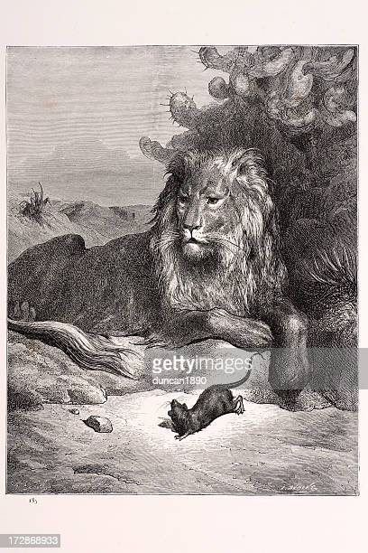 Lion and the Rat
