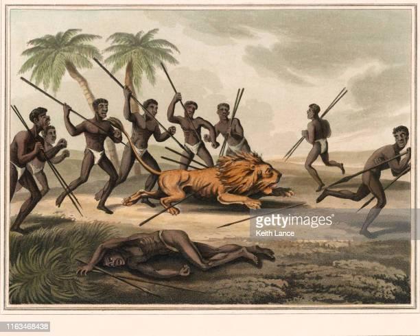 ilustraciones, imágenes clip art, dibujos animados e iconos de stock de caza de leones en africa - masai