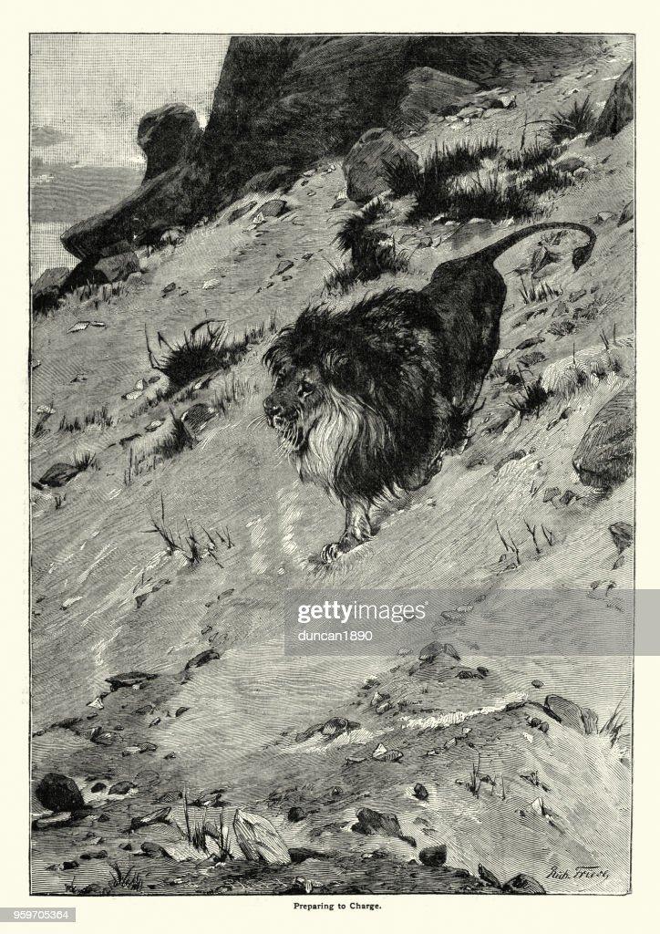 Lion laden wird vorbereitet : Stock-Illustration