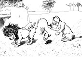 lions play with jumping