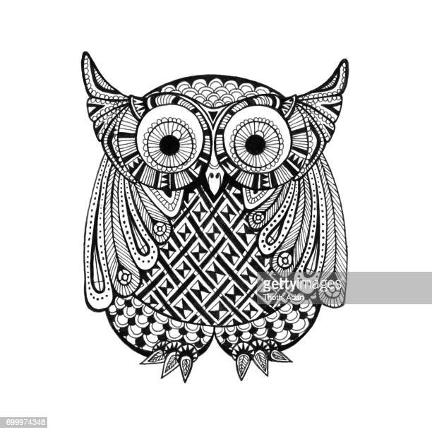 little athene owl doodle drawing - filigree stock illustrations