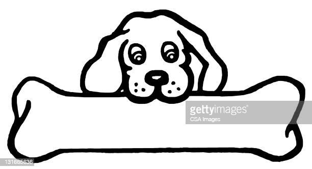 little dog, big bone - pet equipment stock illustrations, clip art, cartoons, & icons
