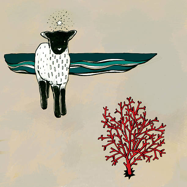 Little lamb and red coral
