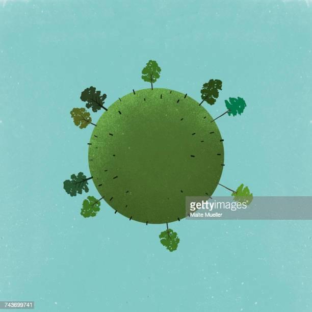 ilustrações de stock, clip art, desenhos animados e ícones de little planet image of trees and stumps on field against sky - desmatamento