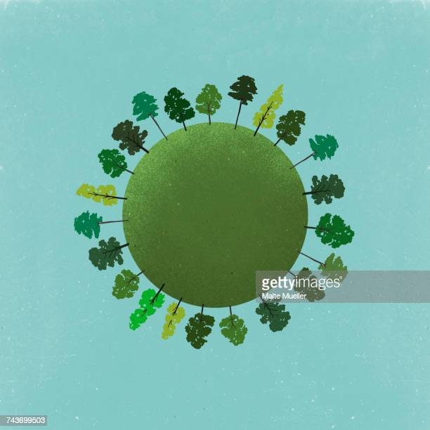 little planet image of trees growing on field against sky - growth stock illustrations