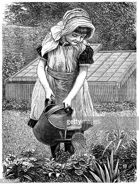 little victorian girl watering a garden - leek stock illustrations, clip art, cartoons, & icons