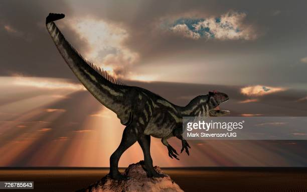 Lone Carnivorous Allosaurus Looking For Its Next Meal