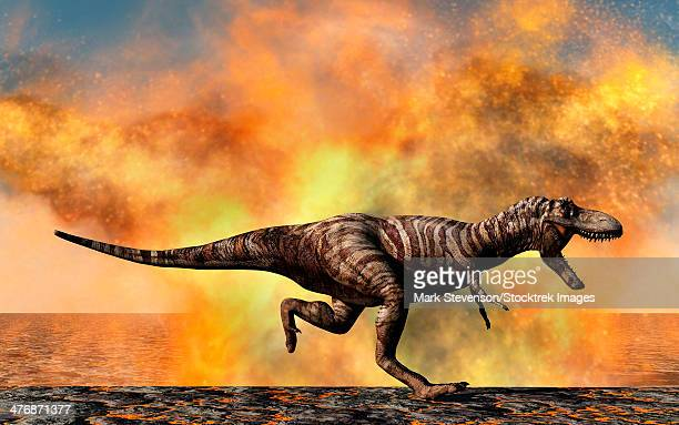 a lone tyrannosaurus rex dinosaur on the run from a violent fire storm during the cretaceous period. - molten stock illustrations, clip art, cartoons, & icons