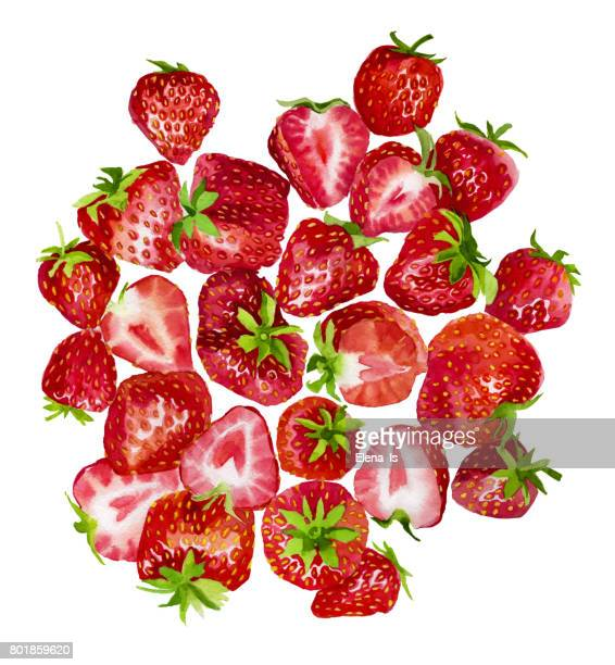 A lot of strawberries are a top view. Berries on a white background. Watercolor illustration.