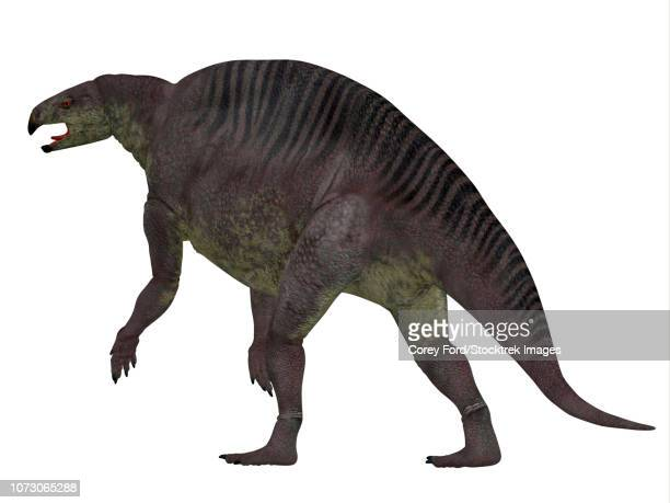 lotosaurus dinosaur, rear view. - odonata stock illustrations, clip art, cartoons, & icons