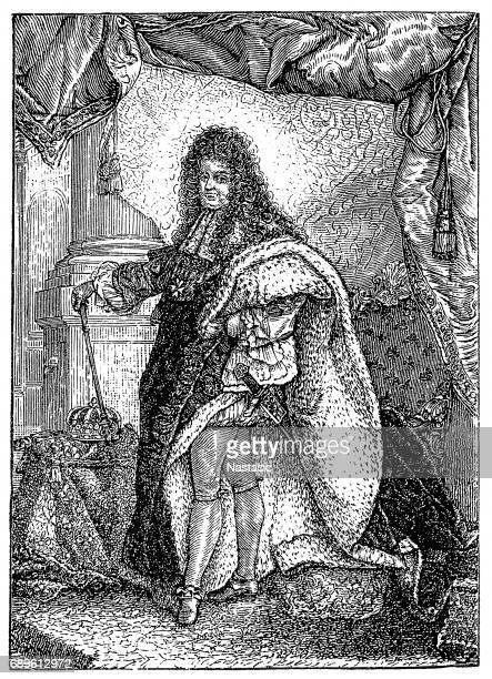 louis xiv, king of france by hyacinthe rigaud - louis xiv of france stock illustrations, clip art, cartoons, & icons