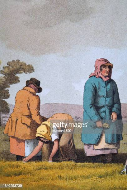 lowkers, agricultural workers weeding amoung the corn crop, yorkshire, early 19th century english art - historical clothing stock illustrations