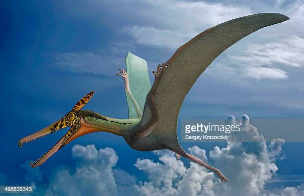 ludodactylus sibbicki, a pterosaur from the lower cretaceous crato formation of brazil. - paleozoology stock illustrations