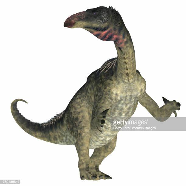 Lurdusaurus dinosaur on white background.