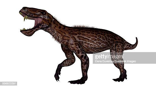 Lycaenops dinosaur roaring, white background.