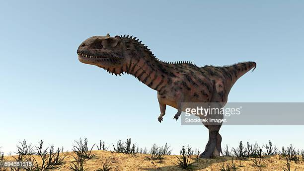 ilustraciones, imágenes clip art, dibujos animados e iconos de stock de majungasaurus in a barren environment. - paleozoología