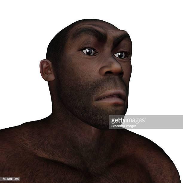 Male homo erectus angry portrait.