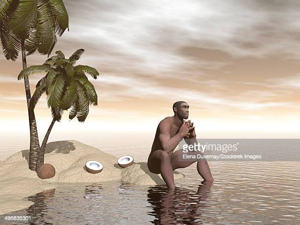 Male Homo Erectus sitting alone on a beach island next to coconuts while thinking.
