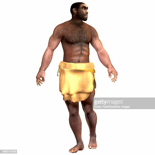 Male homo erectus wearing a loin cloth.
