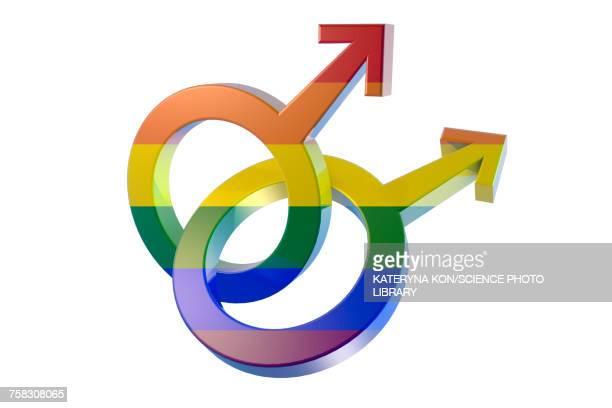 ilustraciones, imágenes clip art, dibujos animados e iconos de stock de male homosexuality symbol, illustration - símbolo de género