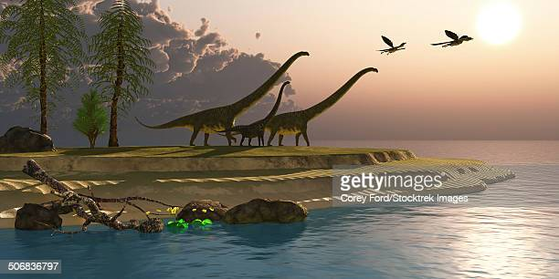 Mamenchisaurus dinosaurs walk to a lake for a morning drink as Microraptors fly overhead.