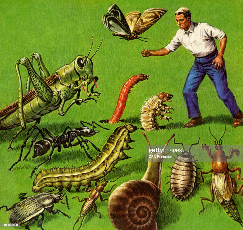 Man and Giants Bugs : stock illustration