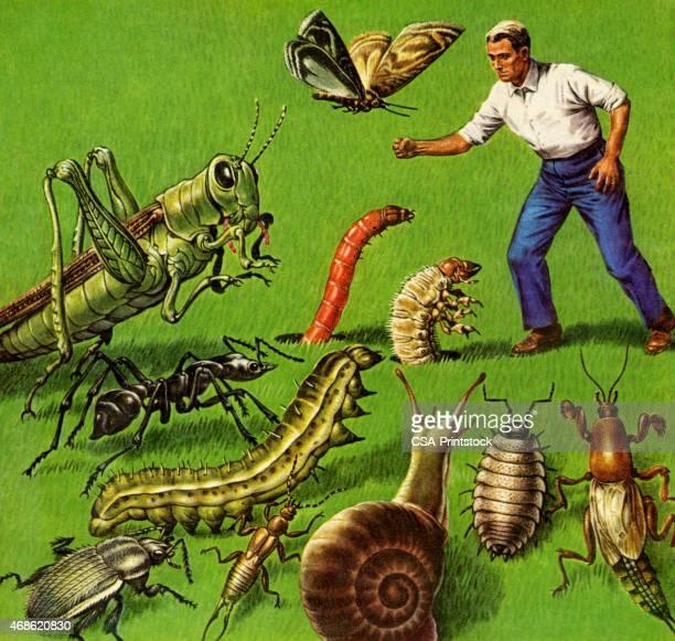 ilustraciones, imágenes clip art, dibujos animados e iconos de stock de hombre y giants errores - cucarachas