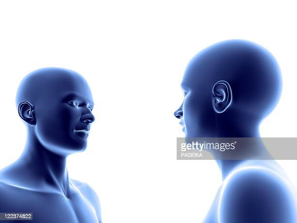 man and woman facing each other - physiology stock illustrations, clip art, cartoons, & icons