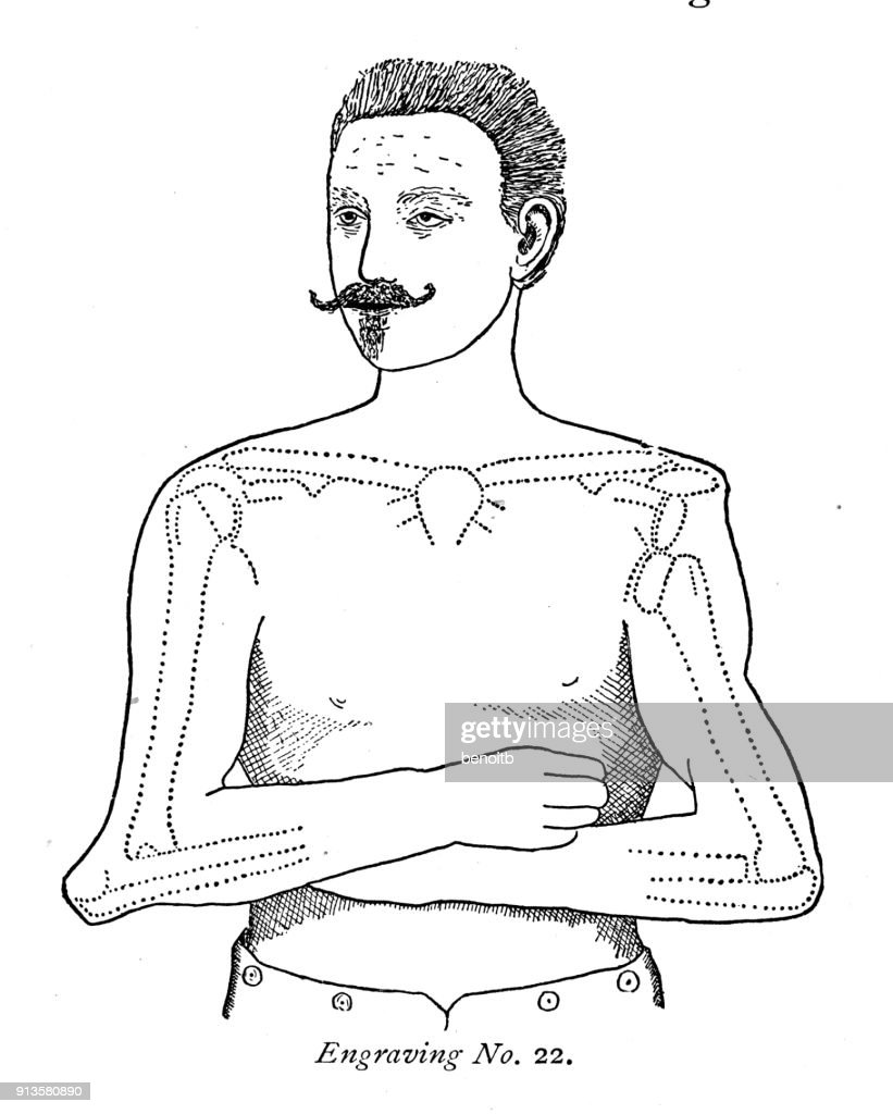 Man Arm And Shoulder Bone Diagram Stock Illustration   Getty Images