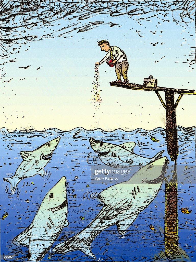 Man Feeding Sharks : Stockillustraties