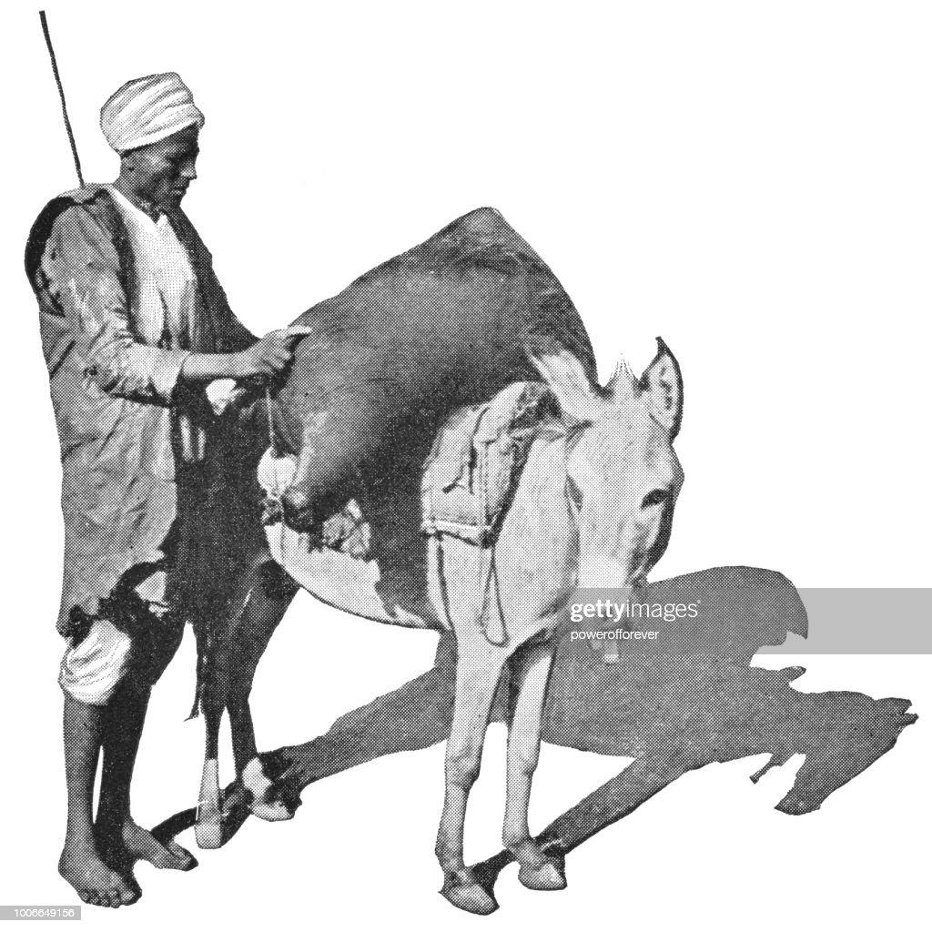 Man loading Goods onto his Donkey in Cairo, Egypt - Ottoman Empire : stock illustration