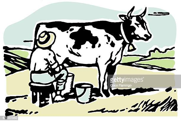 a man milking a cow in a field - paddock stock illustrations, clip art, cartoons, & icons