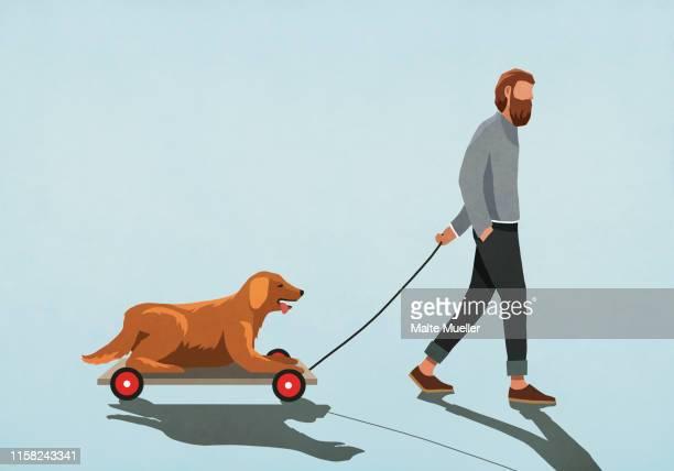 illustrations, cliparts, dessins animés et icônes de man pulling dog on cart - mou
